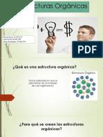 Estructuras Organicas