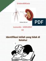 urolithiasis blok 20 - leonardo.pptx