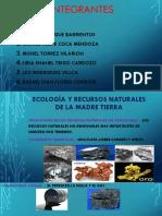 Ecología presentación