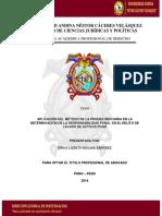 Informe Final de Tesis Aplicaciòn Del Método de La Prueba Indiciaria. Autora Erika Lizbeth Molin