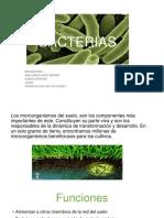 Taller, Hidrosfera-Programa de Promotoría Ambiental