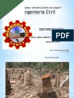 DEFORESTACION UANCV-emch.pptx
