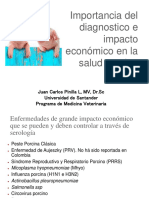 CLASE 1. Importancia Del Diagnostico e Impacto Economico