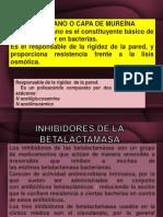 PREVIO ANTIBIOTICOS.pptx