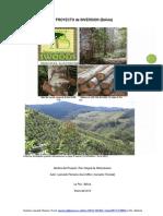 Proyecto de Inversion Bolivia