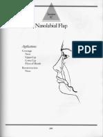 5C - Nasolabial Flap