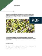 Măslinele, Beneficii Şi Informaţii Nutriţionale
