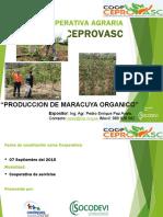 Maracuya Organico, Trujillo, La Libertad, en El Congreso de Chimbote 07/08/2018