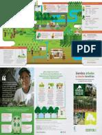 Triptico Plantaciones Forestales.pdf (Listo)