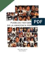 pueblos indígenas y amazónicos - PERU