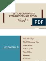 Test Lab Demam Tipoid