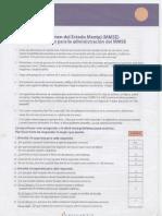 Test Mini Examen Del Estado Mental MMSE