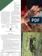 Dawn Farm 2008 Annual Report