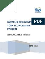 Gümrük Birliğinin Türk Ekonomisine Etkileri - Antalya AB Bilgi Merkezi.pdf