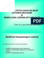 Curs 3 procese patologice + lez elem.ppt