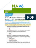 CCNA3 RSE Practice Skills Assessment PT Type A