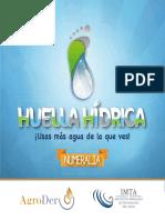 HuellaHidrica Numeralia - AgroDer_Imta.pdf