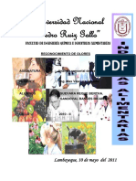 69823990-RECONOCIMIENTO-DE-OLORES (1).pdf
