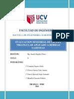230761393 Informe Prueba Triangular
