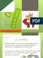 presentaciondelestres-100822115631-phpapp01 (1).pdf