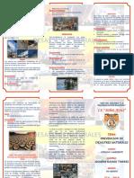 231989737 TRIPTICO Desastres Naturales (1)