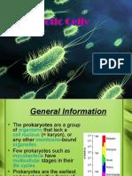Prokaryotic Cells Final