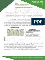 02 Adubaçao verde como fonte de nitrogenio.pdf.pdf