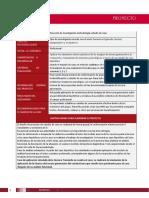 Proyecto (9).pdf