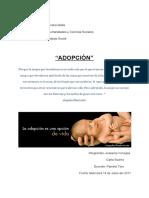Segundo Informe de Adopción