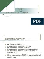 Self Determination Theory