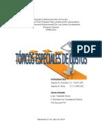 Topicos Especiales de Costos Definitivo Avi 1