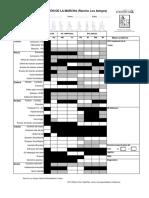 13 ESCALA RANCHO LOS AMIGOS, MEDIKIDS. ACTUALIZADA 2013 (2).pdf