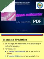 tejido cardiovascular 2018.pptx