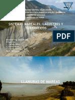 Sistema mareal, lacustre y turbiditas