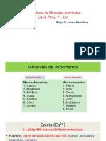 MINERALES -METABOLISMO.pptx