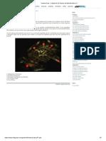 Icewind Dale - Capítulo 6_ El Palacio de Marketh (Nivel 1).pdf