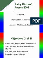microsoft access ch1