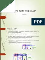 Movimiento Celular