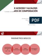 Exposicion Causas de Acidosis y Alcalosis..