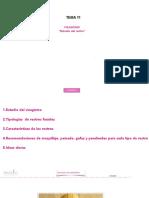 11--visagismo.pdf