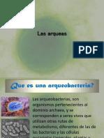 arqueobacteria 2.pptx