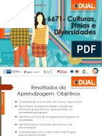 cultura etnias e diversidade
