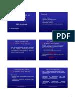 XML-PJ2007.pdf
