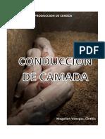 CAMADA - cerdos.docx