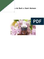 Diário-dos-21-dias-Associação-Portuguesa-de-Reiki-2011