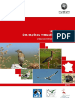 UICN LR Oiseaux Diffusion
