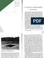 Rosalind-Krauss - La escultura en el campo expandido.pdf