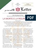 news-letter3 it