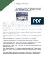 Apidiagnoza - Decembrie.docx