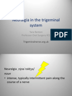 Possible Causes of Neuralgic Pain in the Trigeminal System